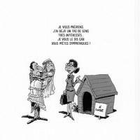 Logo Agence Immobilière De L'Ile