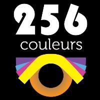 Logo 256 couleurs