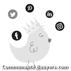 Logo Comin Design