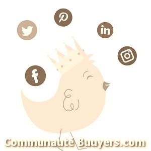 Logo Créasignal Création de sites internet