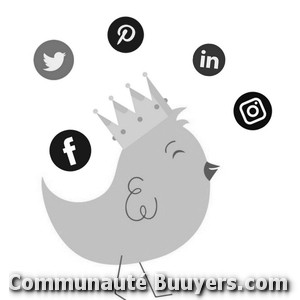 Logo Fgp Solutions E-commerce