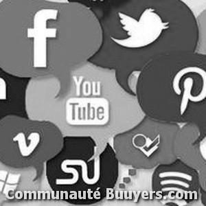 Logo Liononline E-commerce
