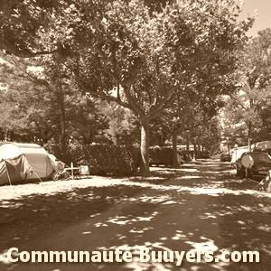 Logo Camping Intercommunal De Lunery