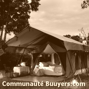 Logo Camping New Day
