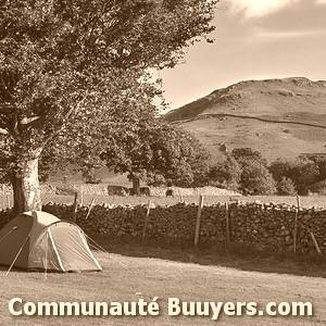Logo Yelloh Village Camping Des Pins Adhérent