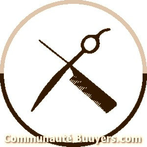 Logo Barbi Sylvie Coiffure à domicile
