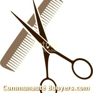Logo Coiff & Co Boa (Sarl) Franchisé indépendant