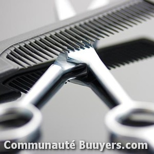 Logo Design Coiffure