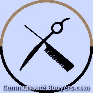 Logo Hair 17