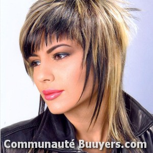 Logo Hair 2000