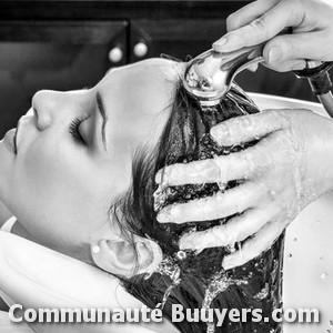 Logo Hair Line Coiffure à domicile