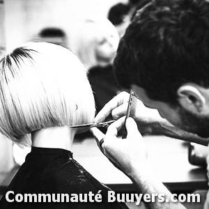 Logo Hair Select Coiffure 2