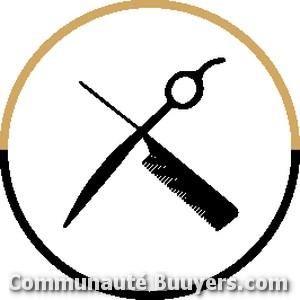 Logo IMAGE IN HAIR