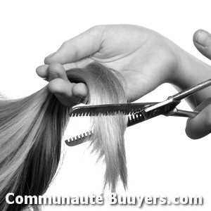 Logo L'Art de Pl'Hair
