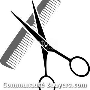 Logo Le Salon de Christophe Violle Coiffure à domicile