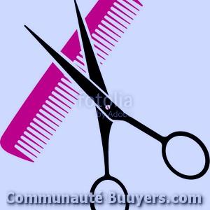 Logo Le Salon De Sandra Coiffure à domicile