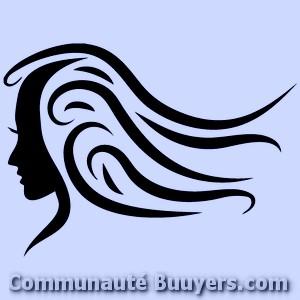 Logo LM Créations Coiffure à domicile