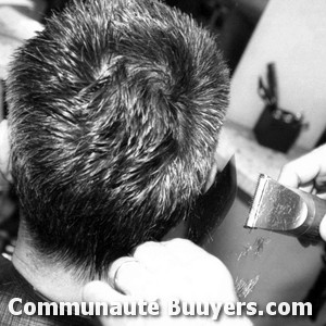 Logo Maestro coiffure