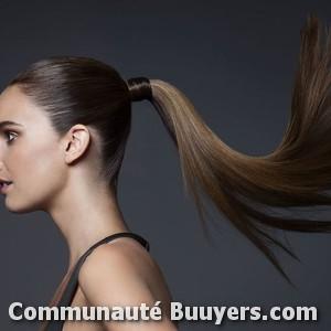 Logo Nova Hair Coiffure à domicile