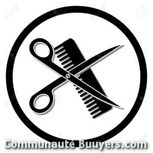 Logo Salon de coiffure Christelle