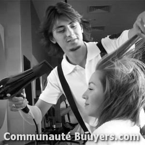Logo Sandrine coiffeuse à domicile Coiffure à domicile