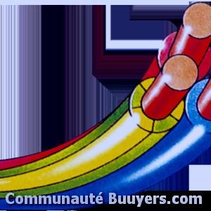 Logo Electricité Rouxeville