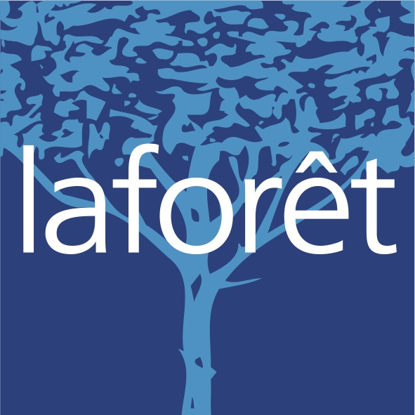 Logo Laforêt 2Ai Franchisé Indépendant Fonds de commerce