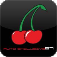 Logo Auto Exclusive 67