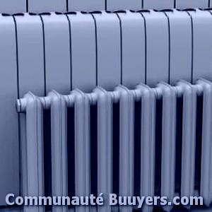 Logo Duché Louis Paul Installation de chaudière gaz condensation